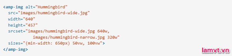 Cách định dạng và bố cục trang AMP HTML img_size