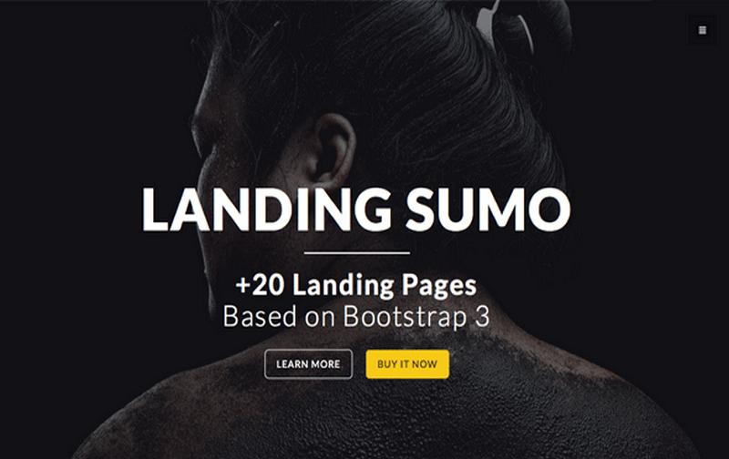 Top 20 mẫu LandingPage HTML miễn phí mau-trang-dich-HTML-mien-phi38