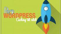 Đặt lên bàn cân 6 Plugin WordPress Caching tốt nhất