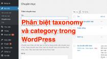 Phân biệt taxonomy và category trong WordPress