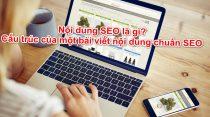 Nội dung SEO là gì? Cấu trúc của một bài viết nội dung chuẩn SEO